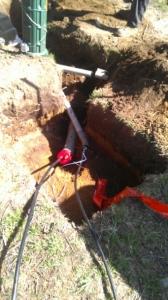 Dig Ups